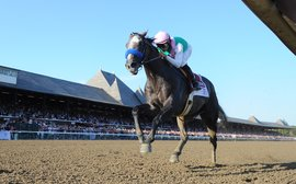 When Arrogate's prodigious talent was the best-kept secret in racing
