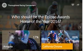 83% of our readers think California Chrome should be Horse of the Year