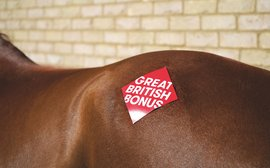 New bonus scheme launched in a bid to safeguard the future of British breeding