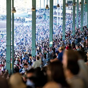 Five Days To Deadline For Breeders Cup Nomination