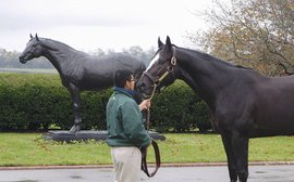 Honor Code, the wow factor and a fresh buzz over the legacy of A.P. Indy