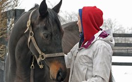 Racehorse aftercare: a beautiful facility that provides all the answers