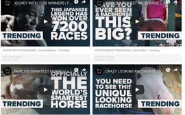 Now racing is bidding to grab a slice of social media gold