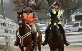 The story of two middle-aged people, two ex-racehorses, a grueling ride across America - and a lot of broken bones