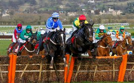 Cheltenham 1-2 for British breeders Newsells Park