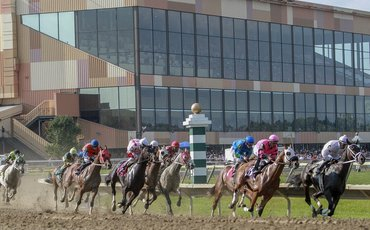 Regulation of U.S. racing: a letter that makes shocking reading