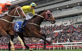 Werther ready for the young guns in prep for Hong Kong International Races