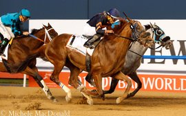 Star sprinter Mind Your Biscuits sold to stand in Japan