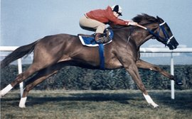 How Secretariat gave the Canadians something to remember for ever