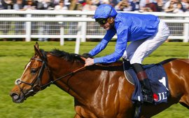 Barney Roy 'in great form' for Juddmonte International showdown