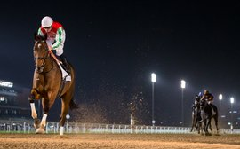 Ice cold in Dubai: the secret weapon of the UAE's hottest trainer