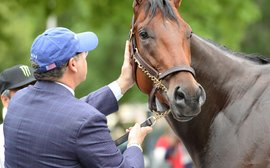 Racing's 'draft' process: how DO owners decide who will train their horses?