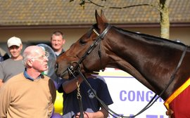 What They're Thinking: the thoughts of master trainer John Oxx