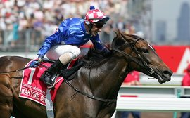 Melbourne Cup-winning mares who've shone at stud - and those who haven't