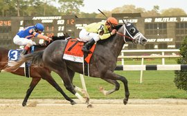 Tampa Bay Downs: now this is how to run a race course