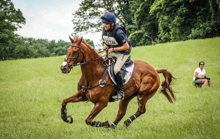 The ex-racehorse going for gold at the Rio Olympics