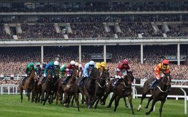 Irish fans spent €22 million attending Cheltenham Festival