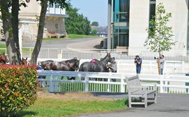 The trials and tribulations of a frustrated racing industry as France prepares for Classic action