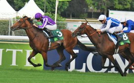 Stallion power: this impressive new generation could be set to maintain Coolmore's domination