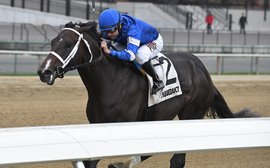 Could this finally be Godolphin's year in the Kentucky Derby?