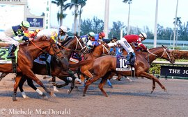 What does the future hold for the Pegasus World Cup?