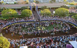 Gun Runner v Arrogate v Pharoah v Chrome: the poll result is in