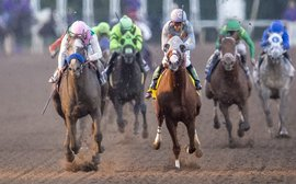 The great Pegasus World Cup game of cat and mouse