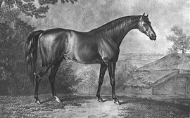 Highflyer: the outstanding sire of the 18th century
