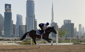 The blue-blooded 2-year-olds readied for the European season in the heart of Dubai