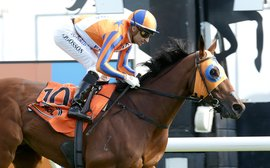 Brave Melody Belle will be 'very competitive' in red-hot Queen Elizabeth