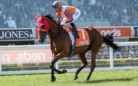 We just can't wait to see her, say owners as star mare's Aussie campaign is cut short