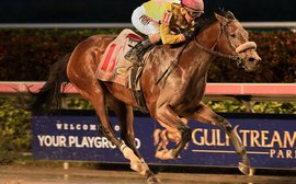 Claiming Crown attracts 294 nominations for Gulfstream Park's Championship Meet opening day