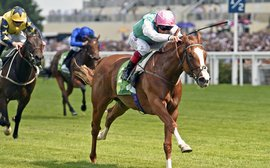 Get ready for the first big test of Frankel's sire potential