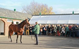 Charity auction features nominations to Kingman, Gleneagles and other top young stallions