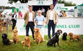 Top dogs: Weatherbys move into canine health with launch of important test for multiple genetic disorders