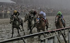 So how WILL this remarkable Preakness be remembered?
