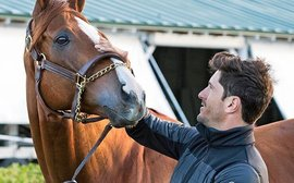 California Chrome, second careers and the lure of the polo field