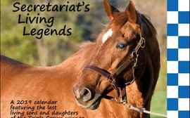 2019 calendar celebrates Secretariat's last living sons and daughters