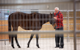 The challenge facing an equine therapy center helping trauma victims turn their lives around