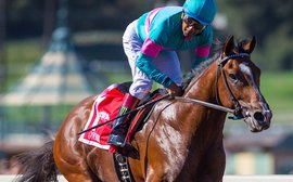 Why Gormley looks a strong contender for the Santa Anita Derby
