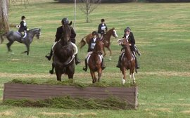 New graduate award to be offered at Thoroughbred Makeover