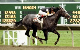 The day Holy Bull gave everything he had to win the Travers
