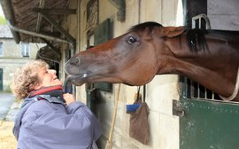 Why this is one of horse racing's greatest love stories