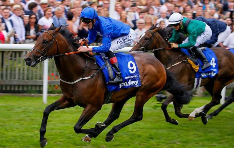 World's top-rated sprinter Harry Angel out to break his Ascot duck in the Diamond Jubilee