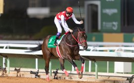 Kentucky Derby possible Full Flat makes it another day to remember for Japan