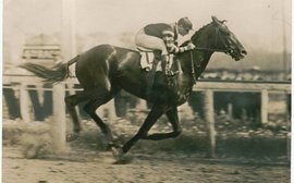 Tony Morris's 100 shapers of the breed: Man o' War's remarkable success at stud