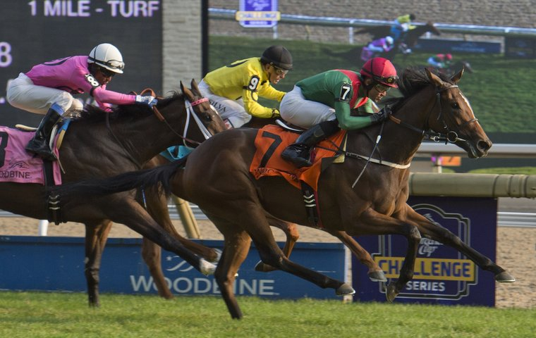Woodbine Provides Barry Irwin With A Day To Remember