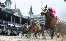 Kentucky Derby 2019 illustrates once more how the gene pool has narrowed