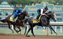 Stars of the Breeders' Cup: how America's trainers measure up