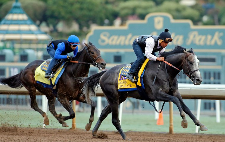 Stars of the Breeders\' Cup: how America\'s trainers measure up ...